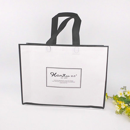Non Woven Packaging Bags