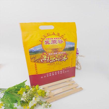 Food Grade Plastic Packaging Bag